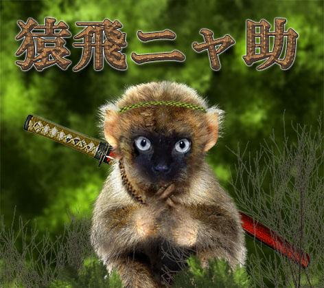 小猿.jpg