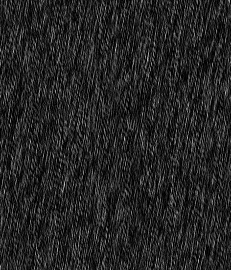 雨4.jpg