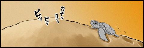 浜辺3.jpg